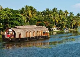 honeymoon tour packages in kerala kumarakom