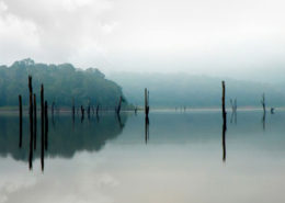 kerla honeymoon packages to thekkady