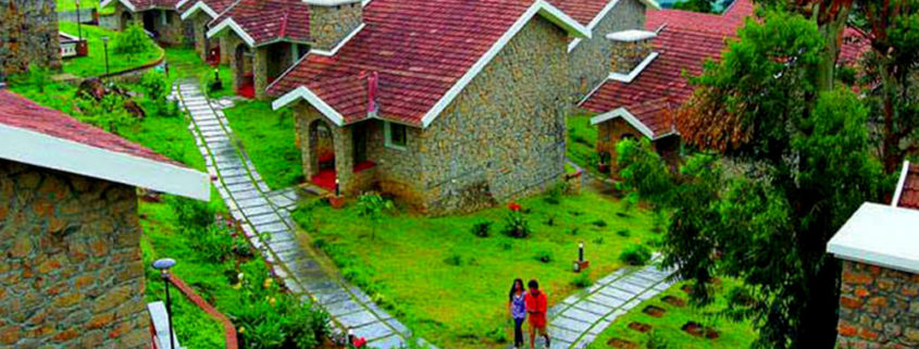 munnar honeymoon packages munnar, kerala