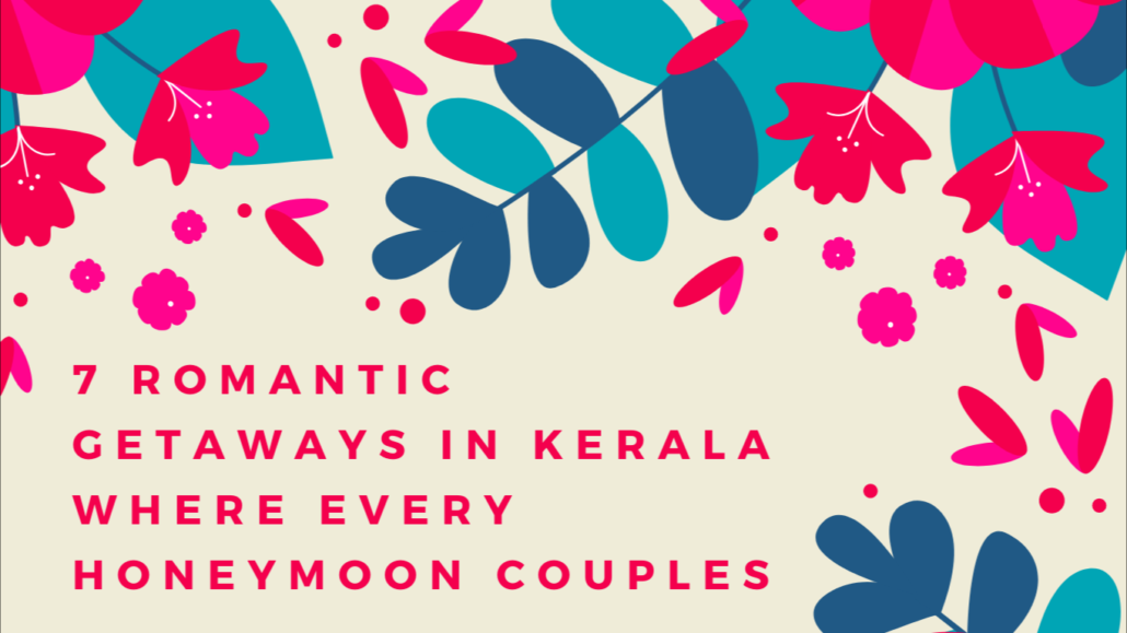 Rain Forest Tree House For Honeymoon Honeymoon Packages Kerala